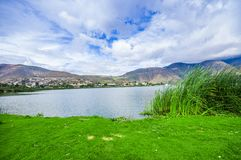 Beautiful view of some typical plants in the beautiful lake in Yahuarcocha , with a gorgeous cloudy day with the. Mountain behind in Ecuador Royalty Free Stock Photography