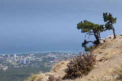 Beautiful view of the southern coast in Crimea Royalty Free Stock Images
