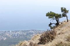 Beautiful view of the southern coast in  Crimea Stock Photography