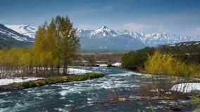 Beautiful view of spring mountain river in Kamchatka Peninsula stock video footage