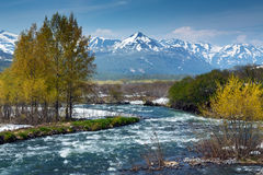 Beautiful view of spring mountain river in Kamchatka Peninsula Stock Photography