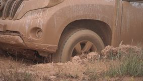Beautiful view of a stuck car. Extreme conditions for driving in the countryside. Towed powerful SUV on rough terrain stock video footage
