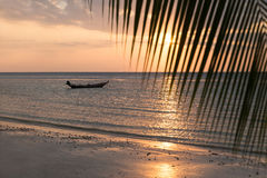 Beautiful view of sunset on the beach. Palm and boats in a sunlight Royalty Free Stock Images