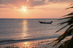 Beautiful view of sunset on the beach. Palm and boats in a sunlight Royalty Free Stock Photos