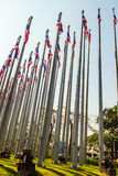 Beautiful view of Thai national flags on the poles at the Queen Stock Image