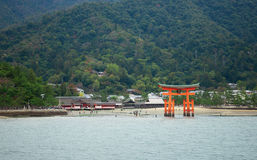 Beautiful view of Torii gate in Miyajima Royalty Free Stock Photography