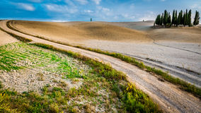 Beautiful view of the tortuous path at sunset in Tuscany Royalty Free Stock Image
