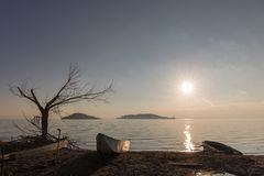 Beautiful view of Trasimeno lake shore Umbria at sunset, with some little boats, skeletal tree and sun coming down. Beautiful view of Trasimeno lake Umbria at stock photography