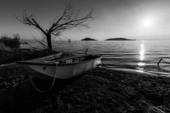 Beautiful view of Trasimeno lake shore Umbria at sunset, with some little boats, skeletal tree and sun coming down. Beautiful view of Trasimeno lake Umbria at stock images