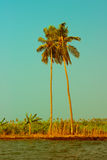 Beautiful view at tropical beach with palm trees. Royalty Free Stock Images