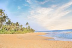 Beautiful view of the tropical beach of Sri Lanka on a sunny day. On a sunny day royalty free stock image