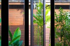 View through the tropical bungalow window on green forest royalty free stock photo