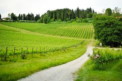 Beautiful view of the Tuscan countryside Royalty Free Stock Photo