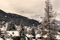 Winter view on the valley in Swiss Alps, Verbier, Switzerland. Beautiful view on the valley in Swiss Alps, Verbier, Switzerland. Toned Image Royalty Free Stock Image