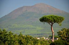 Beautiful view of vesuvius volcano, campania, italy Stock Photography