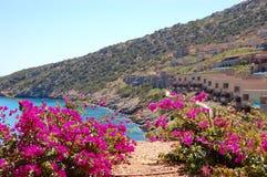 Beautiful view on villas of luxury hotel Stock Image