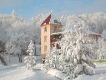 Beautiful view of the winter forest, huge fir trees covered with snow and wooden house building stock photography