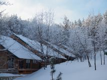 Beautiful view of the winter forest and small wooden houses covered with snow in the early winter morning stock photography