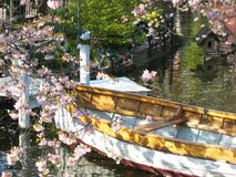 Beautifully view of a wooden boat in Copenhagen in Denmark surrounded by a sea of flowers in a small lake royalty free stock image