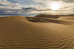 Beautiful views of the desert landscape. Gobi Desert. Stock Photo