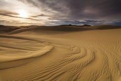 Beautiful views of the desert landscape. Gobi Desert. Stock Photos