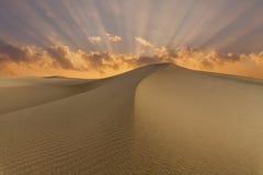 Beautiful views of the desert landscape. Gobi Desert. Mongolia Royalty Free Stock Photo