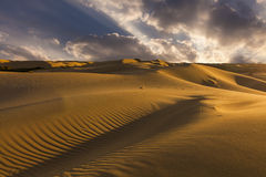 Beautiful views of the desert landscape. Gobi Desert. Mongolia. Royalty Free Stock Image