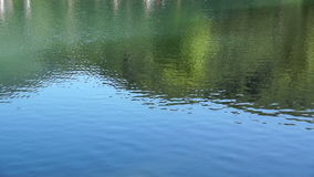 Beautiful views of forest lake with reflection of green trees and grass. stock video