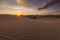 Beautiful views of the Gobi desert. Stock Images