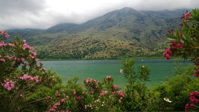 Beautiful views of lake Kournas, Crete through the lush foliage of flowering shrubs in bright cloudy spring weather Stock Photography