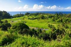 Beautiful views of Maui North coast seen from famous winding Road to Hana. Hawaii. USA Royalty Free Stock Photos