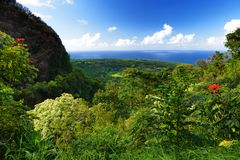 Beautiful views of Maui North coast seen from famous winding Road to Hana. Hawaii. USA Stock Photography