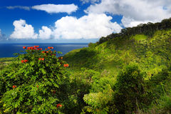 Beautiful views of Maui North coast seen from famous winding Road to Hana Royalty Free Stock Photo