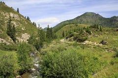 Beautiful views of mountain river Ai Gulak Stock Photos