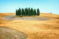 Beautiful views of summer landscape in Tuscany Royalty Free Stock Photography