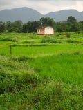 Beautiful Village Farmhouse Royalty Free Stock Photo