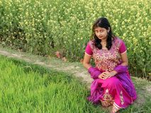 A beautiful village girl siting on the land of mustared seed royalty free stock photos
