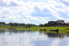 Beautiful village landscape. Beautiful summer landscape in Russian village Royalty Free Stock Photography
