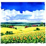 Beautiful village rural landscape, sunflower field, meadows, country houses, blue sky, clouds, watercolor illustration. Beautiful village rural landscape with Stock Image