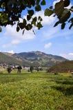Beautiful village in sunshine Stock Photography