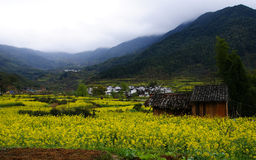 Beautiful village of Wuyuan Stock Photography