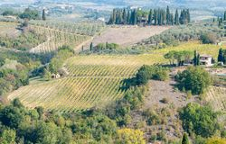 Beautiful vineyard fields and a lovely house in San Gimignano,Italy. Beautiful vineyard fields and a lovely house in San Gimignano, Tuscany area, Italy royalty free stock photos