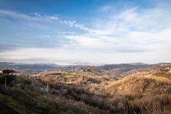 Beautiful vineyard terraces in goriska brda in wintertime sunlight, slovenia. Beautiful vineyard terraces in goriska brda in wintertime sunlight backlight royalty free stock images
