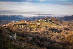 Beautiful vineyard terraces in goriska brda in wintertime sunlight, slovenia. Beautiful vineyard terraces in goriska brda in wintertime sunlight stock photo
