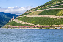 Beautiful vineyards at  the rhine valley in Ruedesheim with trai Stock Image