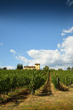 Beautiful Vineyards in Tuscany with typical farm house. Stock Photos