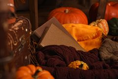 Beautiful vintage autumn composition with pumpkins