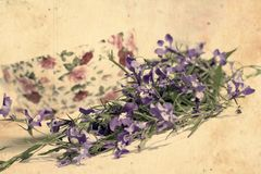 Beautiful vintage background with lobelias Stock Photo