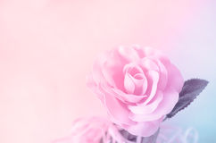 Beautiful vintage background - pink pastel rose Stock Image