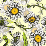 Beautiful vintage background with white daisies stock illustration